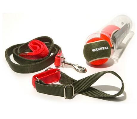 wagwear Starter Kit
