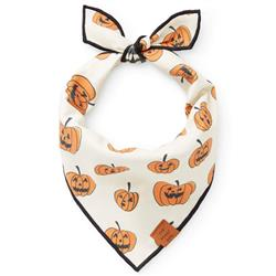 Pumpkin Patch (Reversible) Dog Bandana