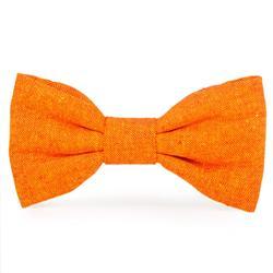 Satsuma Dog Bow Tie