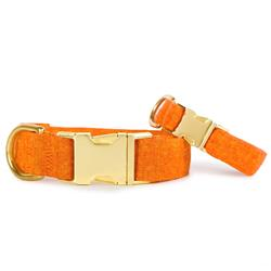 Satsuma Dog Collar