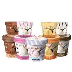 Puppy Scoops Ice Cream Mix for Dogs