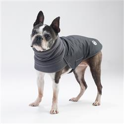 Trench-Coat Black for dogs