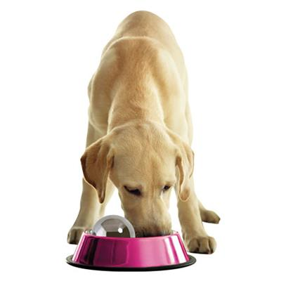 Portion Pacer Stainless Steel - Dog Hog