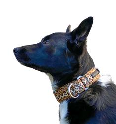 Featherweight Martingale Collar