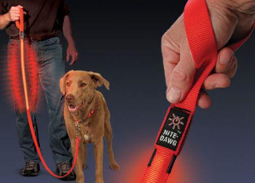 Nite Dawg - LED Dog Leash