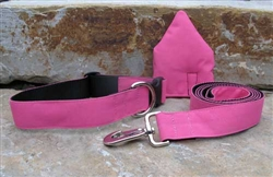 Pink Houses Collars and Leashes
