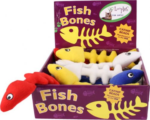 Floppy Fish Bones in Display Box