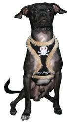 Black Skull Fur Harness Vest