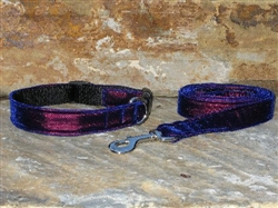 Purple Velvet Collars and Leashes