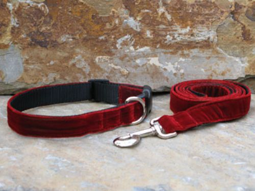Red Velvet Collars and Leashes