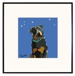 Framed Print: Rottweiler W/ Blue Collar