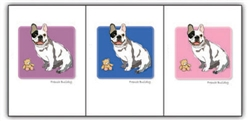 French Bulldog W/ Teddy Bear - Grrreen Boxed Note Cards