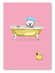 Birthday: Bichon in Bath Tub