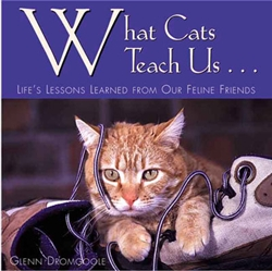 What Cats Teach Us; Life's Lessons Learned form Our Feline Friends