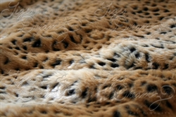 Ocelot Tiger Dreamz Luxury Mat Beds