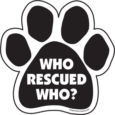Who rescued who? Paw Magnets