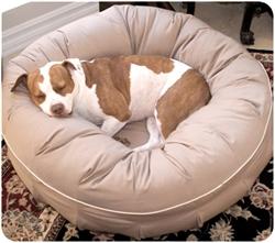 L.A. Dog Company® Dreamer™
