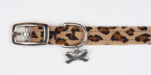 Cheetah Plain Collars