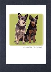 Australian Cattle Dog - Grrreen Boxed Note Cards
