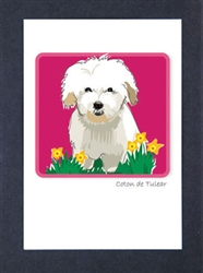 Coton de Tulear - Grrreen Boxed Note Cards