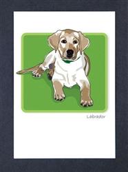 Labrador - Pup - Grrreen Boxed Note Cards
