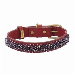 Beaded Amethyst Collar & Leash