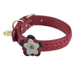 Petal Collar & Leash - Rose - Red