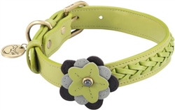 Petal Collar & Leash - Orchid - Green