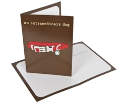 Extraordinary dog - Sympathy Card - 6 pack