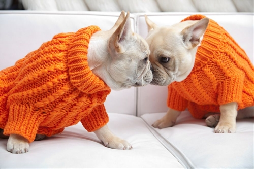 Orange Knit Sweater