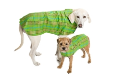 Raincoat | Signature Plaid | Green, Orange, Red, Blue, & Lavender