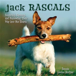 Jack Rascals; Bouncing, Barking, and Burrowing Their Way Into Our Hearts
