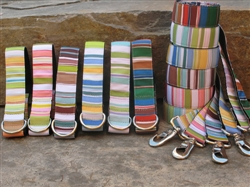 Sporty Stripes Collars and Leashes