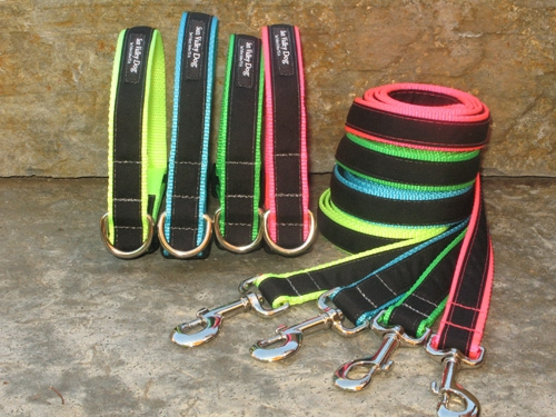 Sun Valley Extreme Collars and Leashes