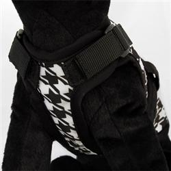 Avant Garde Harness - Sherlock