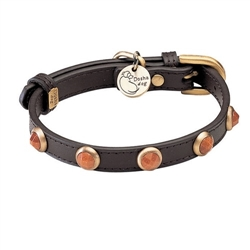 Pebbies Collar & Leash - Gold Sand Stone