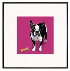 Framed Print: Boston Terrier with Bone