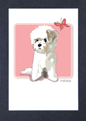 Maltese with Butterfly - Grrreen Boxed Note Cards