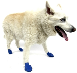 PawZ - Blue - Medium - up to 3""