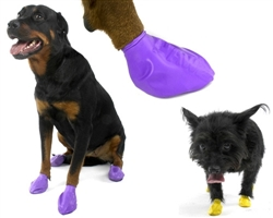 PawZ - Purple - Large - up to 4""