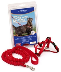 Come with Me Kitty™ Harness & Bungee Leash