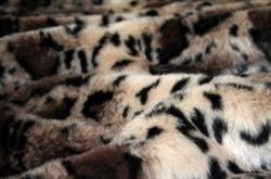 Clouded Leopard Tiger Dreamz Luxury Mat Beds Faux Fur