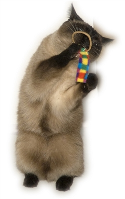 Cat Dancer RingTail Chaser Cat Toy – 100 Bulk