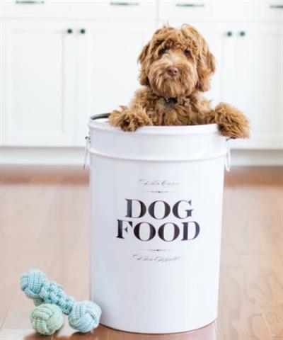 Dog Food Storage Canister - Bon Chien