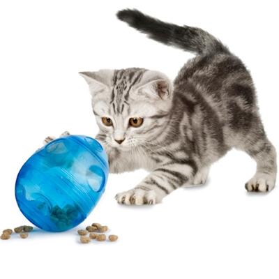 PetSafe® Egg-Cersizer™ Cat Feeder Toy