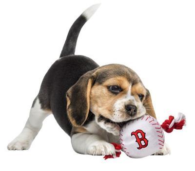 Boston Red Sox Baseball Toy - Nylon w/rope