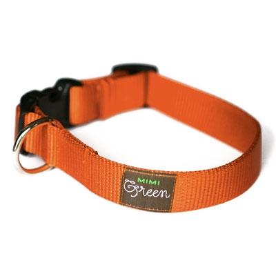 Pumpkin Webbing Collars & Leashes