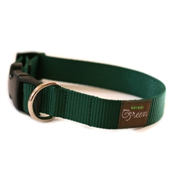 Forrest Green Webbing Collars & Leashes