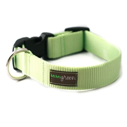 Lime Webbing Collars & Leashes