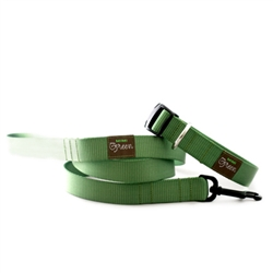 Sage Green Webbing Collars & Leashes